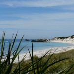 Perfect Beaches on Rottnest Island