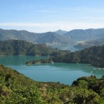 The Queen Charlotte Track: 5 Questions Answered