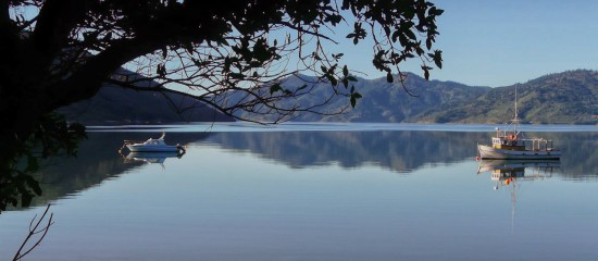 Morning at Endeavour Inlet
