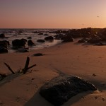 Photo of the Week: Sunrise at Burleigh Heads