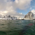 Snorkeling…in the Arctic…in WINTER?!