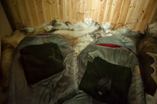 Arctic Sleeping Bags