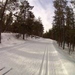 Cross-Country Skiing…Without Falling Over!