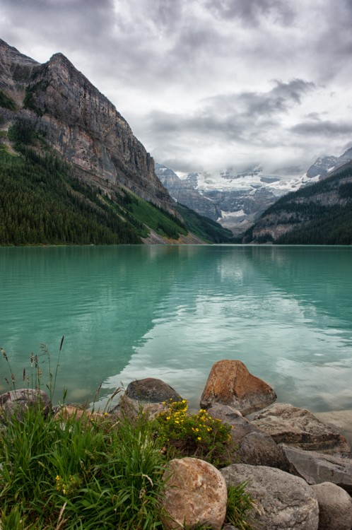 The Calm Shores of Lake Louise