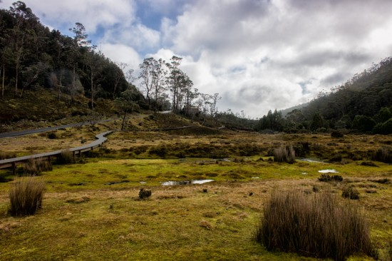 Cradle Mountain Wilderness