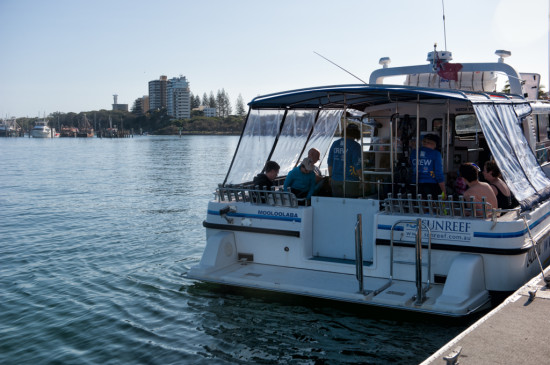 The Sunreef Whale Swimming Boat