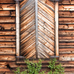 Wooden Wilderness Windows