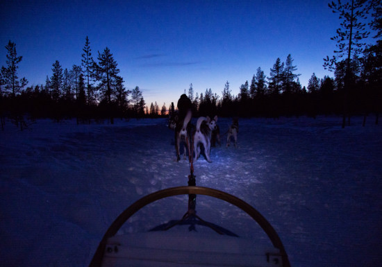 Dogsledding at Hetta Huskies