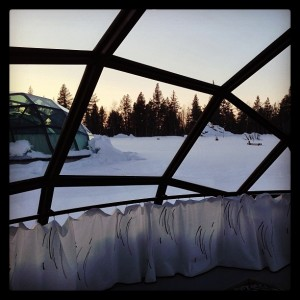 The view from inside my GLASS IGLOO!